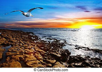 costiero, vista