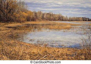 costiero, wetlands, grandi laghi