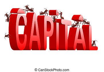 costruzione, capitale