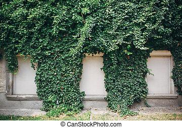 costruzione, parete, foglie, coperto