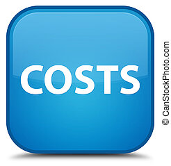 Costs special cyan blue square button