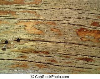 Costuras, de madera, agujeros, tabla