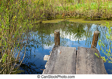 Cosy nook at a spring pond - Cosy nook at a small spring ...