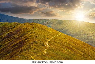 coteau, coucher soleil, par, pré, route