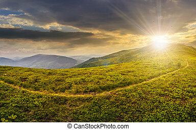 coteau, sentier, par, pré, coucher soleil