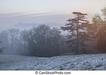 cotswold, paisaje de invierno