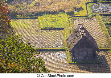 Cottage and rice field in small village shirakawa-go japan. ...