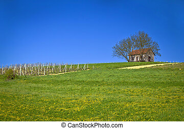 Cottage and vineyard on idyllic hill, Kalnik, Croatia