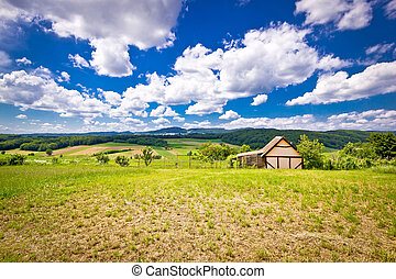 Cottage in idyllic agricultural landscape of Prigorje region...