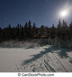 Cottage in moon lit winter wonderland