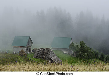 cottage, in, nebbia