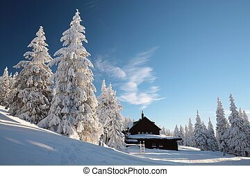 Cottage in the mountains