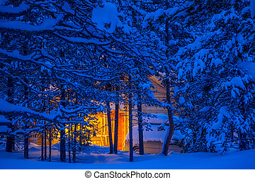 Cottage in the Winter Forest