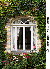 Cottage window with ivy