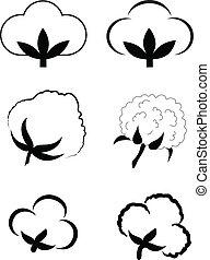 cotton - Cotton (Gossypium).