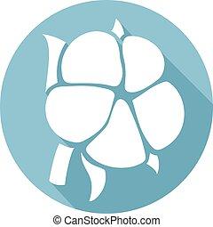 cotton flat icon