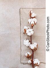 Cotton Flowers OnRustic Background