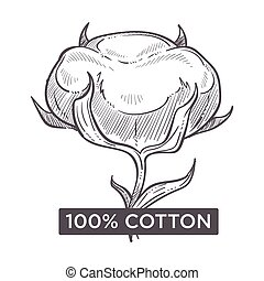 Cotton hundred percent natural material monochrome sketch outline