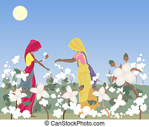 cotton picking - an illustration of two traditionally...