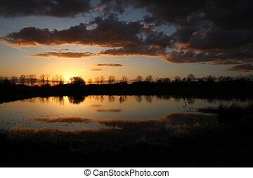 coucher soleil, à, les, les, étang