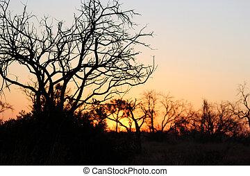 coucher soleil, 7