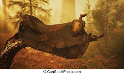 coucher soleil, arbre, cuir, vendange, mort, cheval, selle, ...