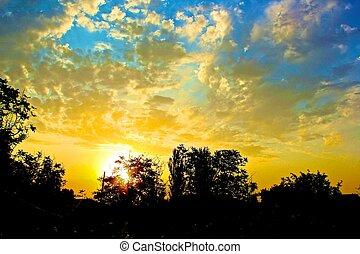 coucher soleil, au-delà, arbre