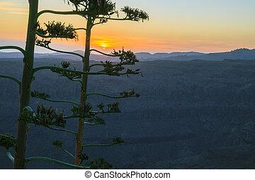 coucher soleil, au-dessus, montagne, paysage.