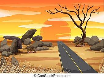 coucher soleil, désert, vide, route