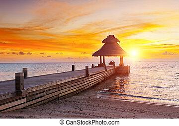 coucher soleil, dans, les, paradis