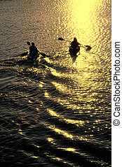 coucher soleil, femme, kayaking, homme