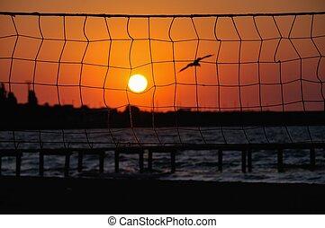 coucher soleil, filet, par, voleyball