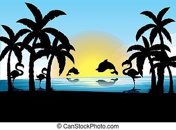 coucher soleil, flamant rose, silhouette, dauphin, scène