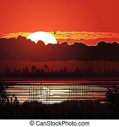 coucher soleil, fond, nature