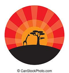 coucher soleil, girafe, arbre, fond