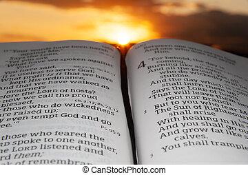 coucher soleil, mis valeur, nuages, 2., fond, saint, malachi, bible, ouvert, soleil, chapitre, 4, vers, rayons