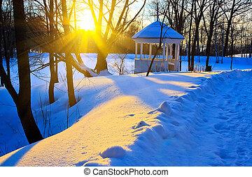 Coucher soleil, Parc, hiver