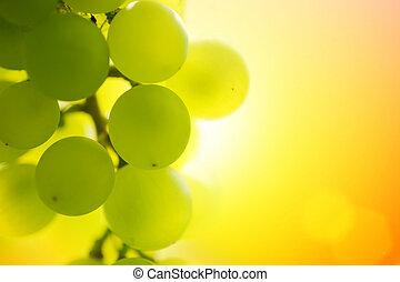 coucher soleil, raisins