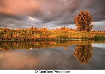coucher soleil, reflet, dans, les, rivière