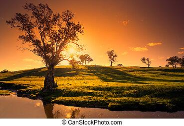 coucher soleil, ruisseau