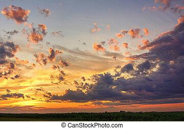 coucher soleil, sur, ciel, champ maïs