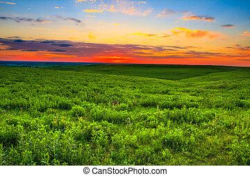 coucher soleil, sur, collines, kansas, silex