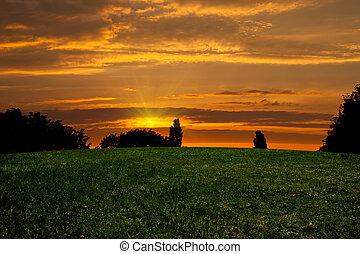coucher soleil, sur, field.