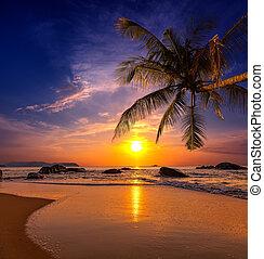 coucher soleil, sur, les, sea., province, khao, lak, dans, thaïlande