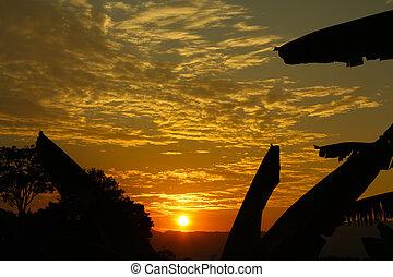 coucher soleil, tropiques, colombie