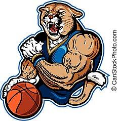 cougar basketball player - muscular cougar basketball mascot...