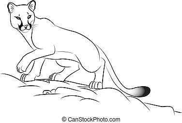cougar - Illustration of a cougar