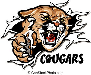 cougars mascot ripping through the background for school,...
