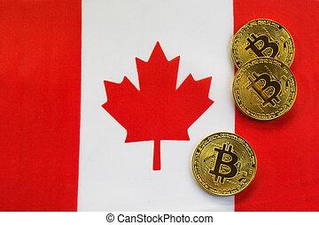 couleur canada, drapeau, bitcoin, or