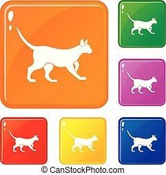 couleur, chat, vecteur, ensemble, icônes